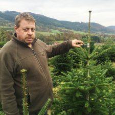 Weihnachtsbaum online kaufen test, Tannenbaum online, Christbaum online bestellen, christbaumkulturen Niederösterreich