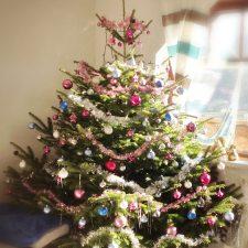 Tannenbaum online bestellen, Weihnachtsbaumschmuck, Christbaumschmuck 2019